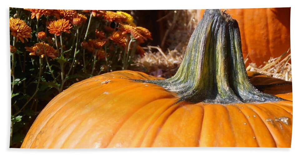 Pumpkin Beach Towel featuring the photograph Fall Pumpkin by Kimberly Perry