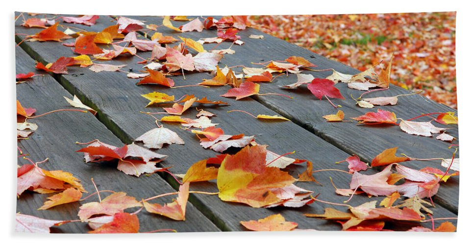 Landscape Beach Towel featuring the photograph Fallen Leaves by Lisa Phillips