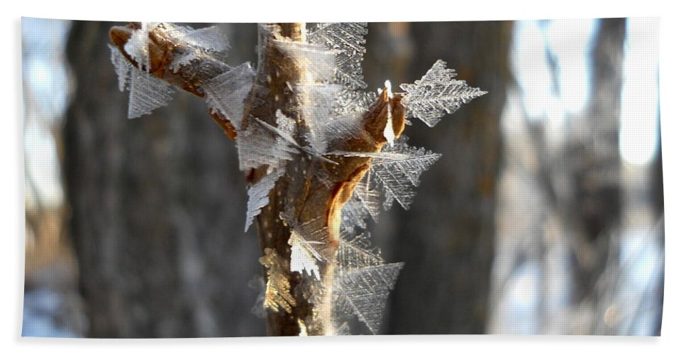 Frost Beach Towel featuring the photograph Fancy Fractal Frost Crystals by Kent Lorentzen