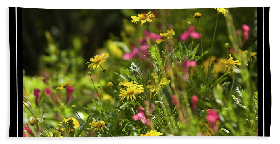 Field Of Wildflowers Beach Towel featuring the photograph Field Of Wildflowers by Carolyn Marshall
