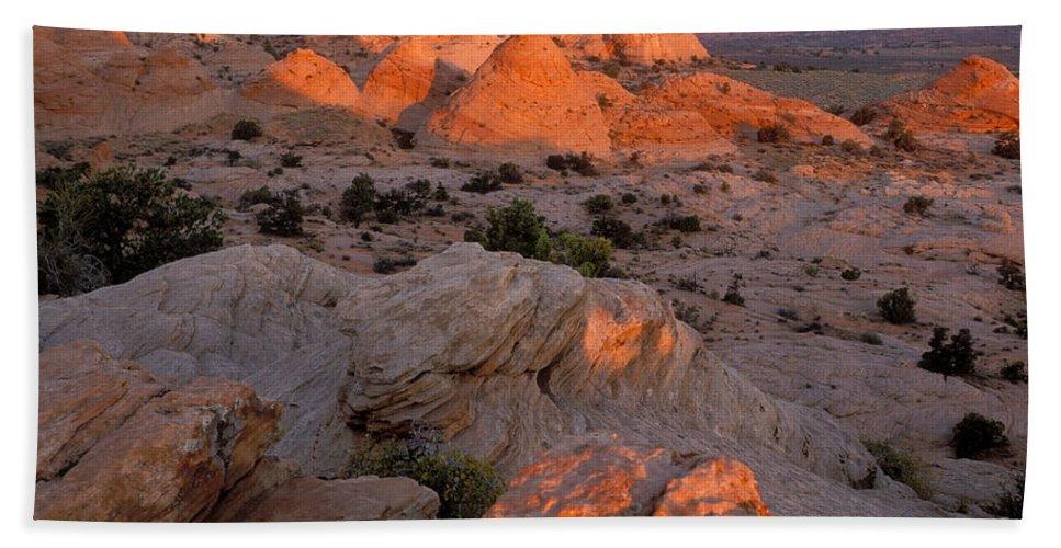 Sandra Bronstein Beach Towel featuring the photograph First Light On Little Cut by Sandra Bronstein