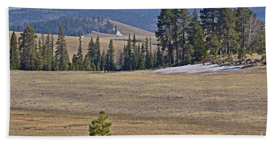 Fine Art Beach Towel featuring the photograph Fish Creek Valley by Donna Greene