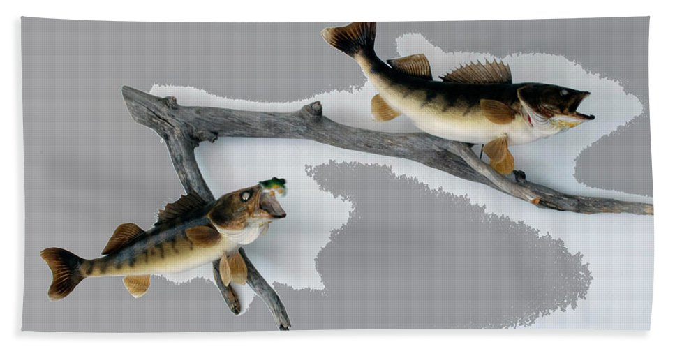 Animals Beach Towel featuring the photograph Fish Mount Set 03 C by Thomas Woolworth