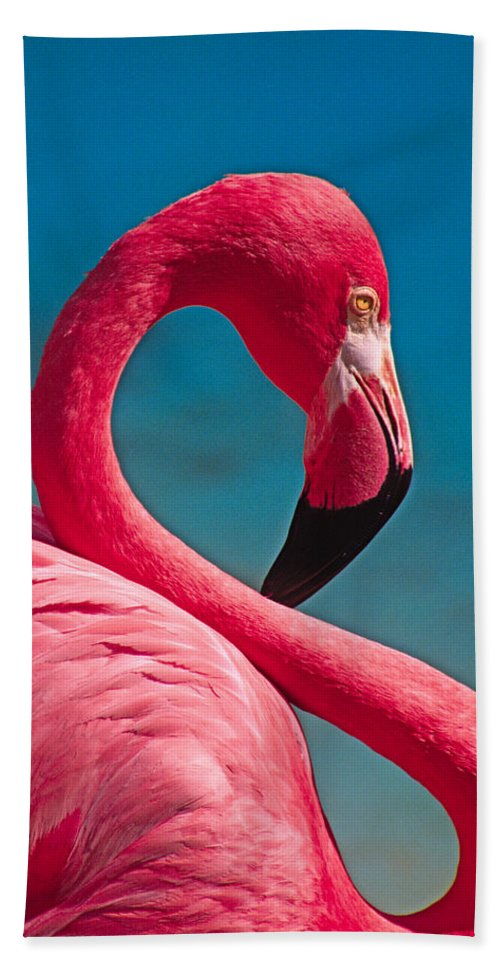 Flamingo Beach Towel featuring the photograph Flexible Flamingo by Michele Burgess