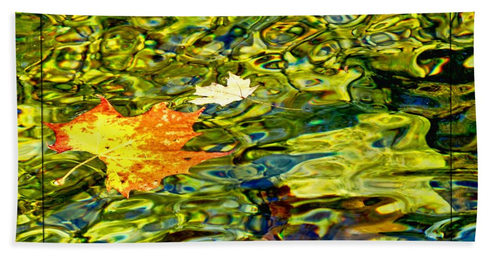 Nature Beach Towel featuring the photograph Floating Along by Debbie Portwood
