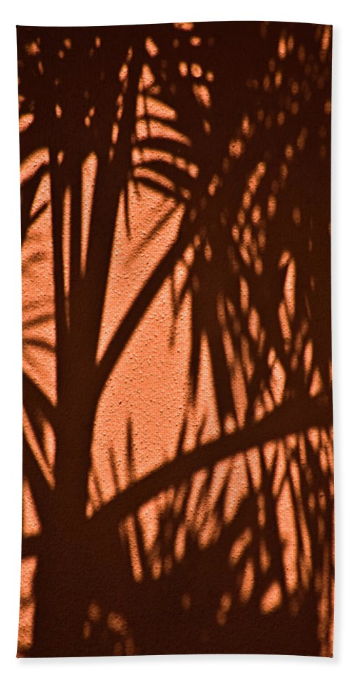 Palm Frond Beach Towel featuring the photograph Florida Palm Shadow by Carolyn Marshall