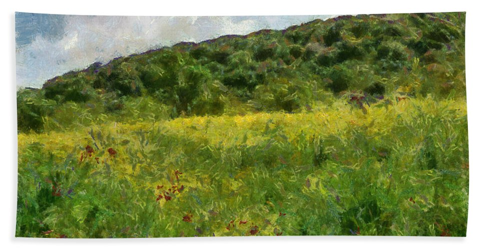 Meadow Beach Towel featuring the photograph Flowering Fields by Michael Goyberg