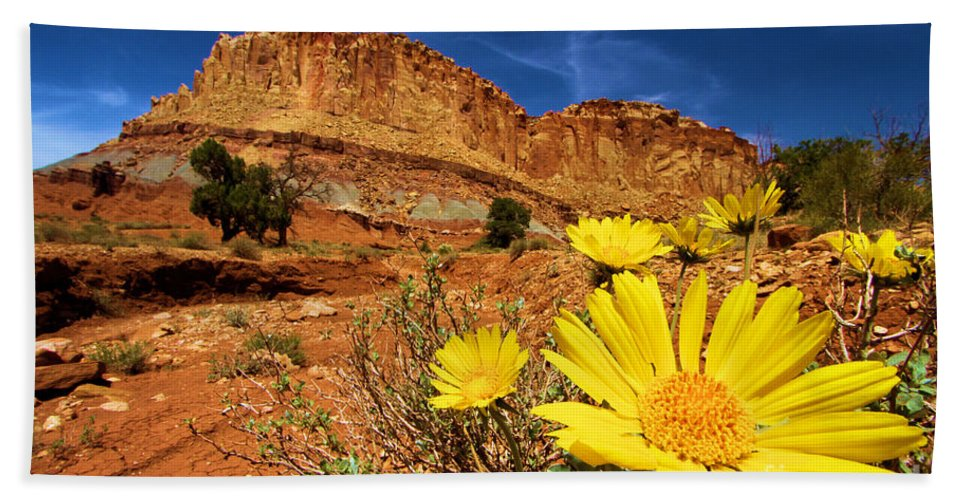 Yellow Flowers Beach Towel featuring the photograph Flowers And Buttes by Adam Jewell