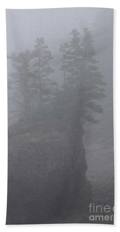 Foggy Beach Towel featuring the photograph Foggy by Diane Greco-Lesser