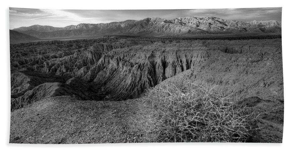 Anza-borrego Desert Beach Towel featuring the photograph Font's Point Bush  Black And White by Peter Tellone