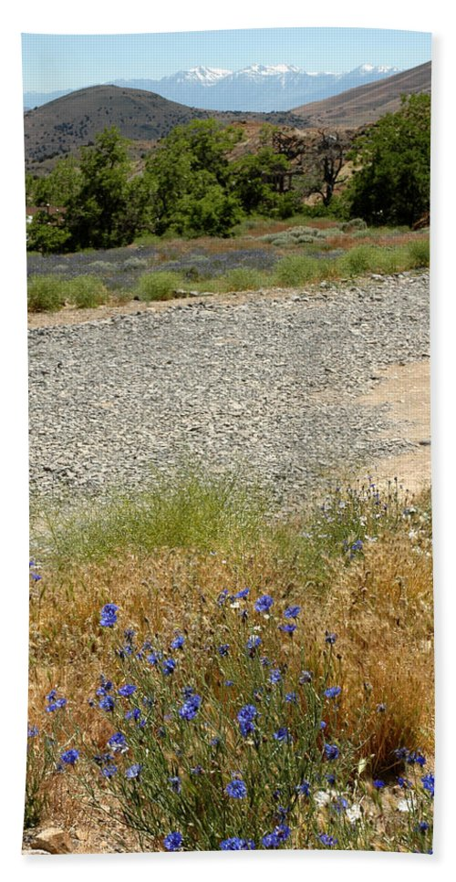 Usa Beach Towel featuring the photograph For Purple Mountain Majesties by LeeAnn McLaneGoetz McLaneGoetzStudioLLCcom