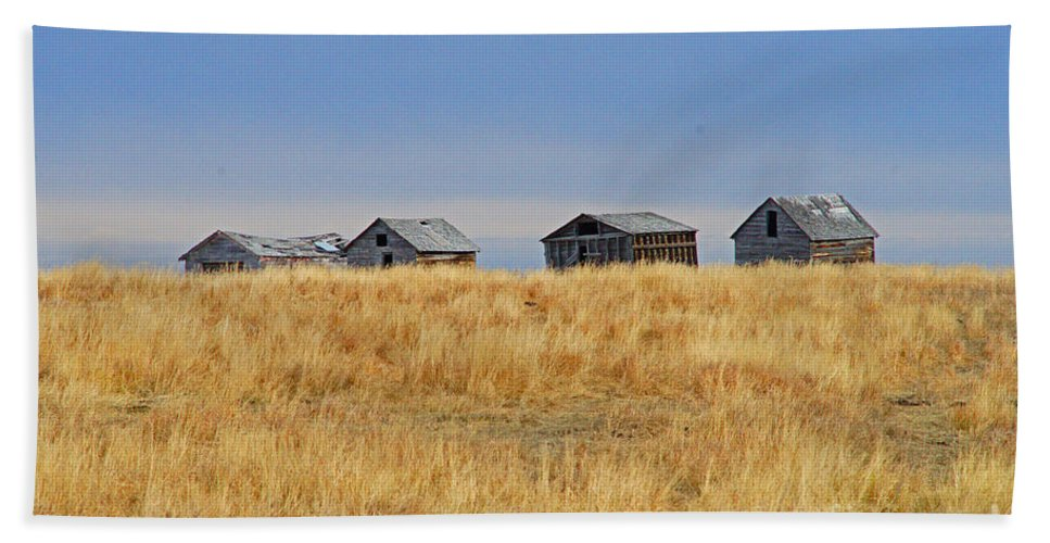 Old Barn Beach Towel featuring the photograph Four In A Row by Randy Harris