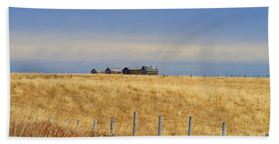 Old Barn Beach Towel featuring the photograph Four Outbuildings In The Field by Randy Harris