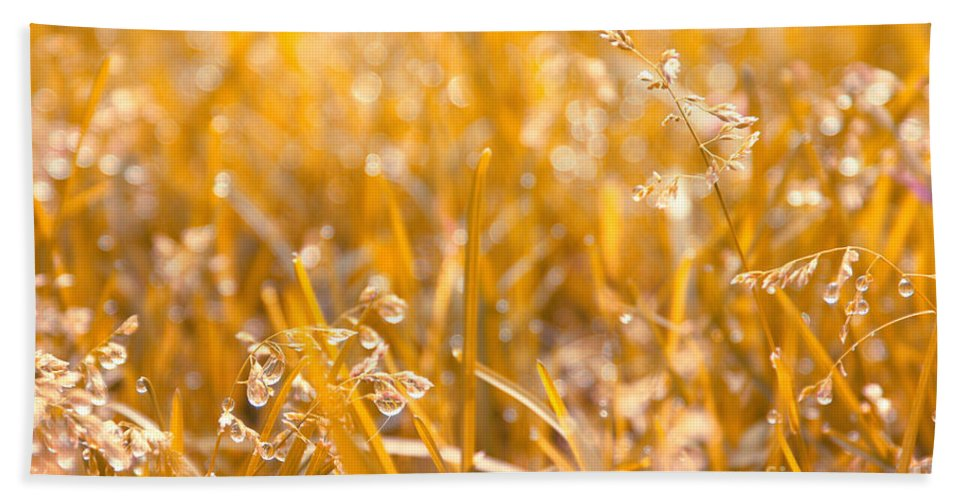 Grass Beach Towel featuring the photograph Freshness by Aimelle