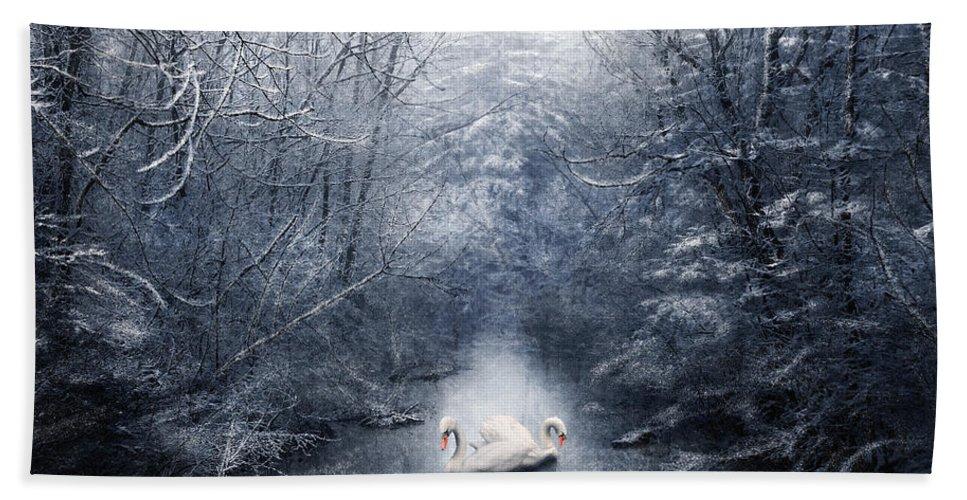 Beautiful Beach Towel featuring the digital art Frozen Time by Svetlana Sewell