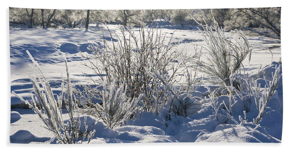 Winter Beach Towel featuring the photograph Frozen Winter Landscape by Howard Kennedy