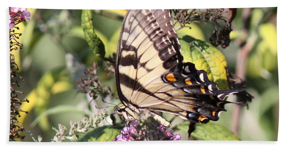 Goldenrod Beach Towel featuring the photograph Garden Of Colors by Travis Truelove