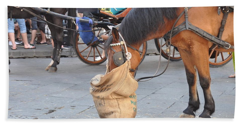 Horse Beach Towel featuring the photograph Getting The Feedbag On by Rich Bodane
