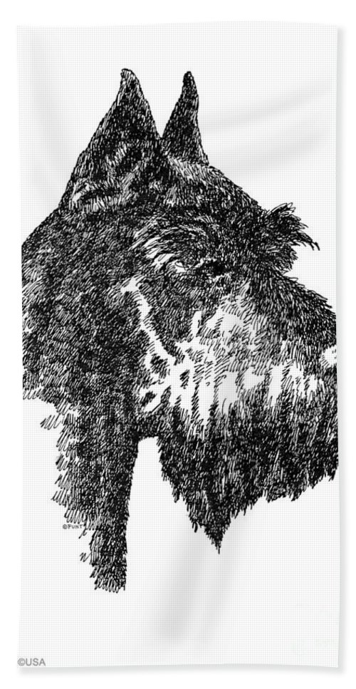 Schnauzer Beach Towel featuring the drawing Giant-schnauzer-portrait by Gordon Punt