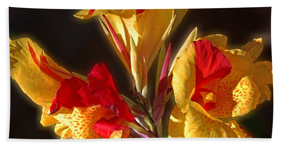 Iris Beach Towel featuring the photograph Glowing Iris by DigiArt Diaries by Vicky B Fuller