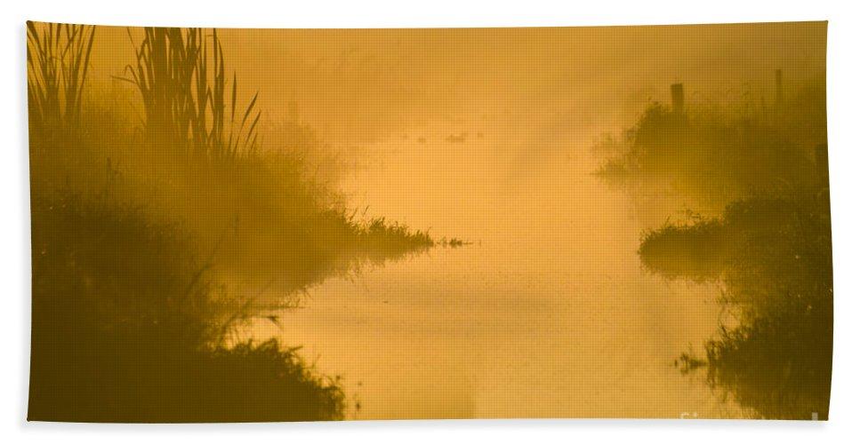 Luminous Beach Towel featuring the photograph Golden Riverside by Heiko Koehrer-Wagner