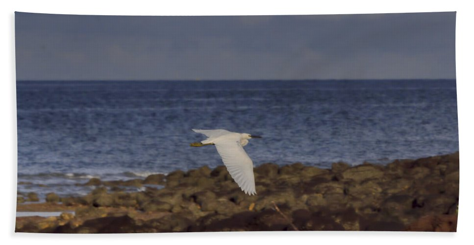 Ascent Beach Towel featuring the photograph Gracious Ascent V2 by Douglas Barnard