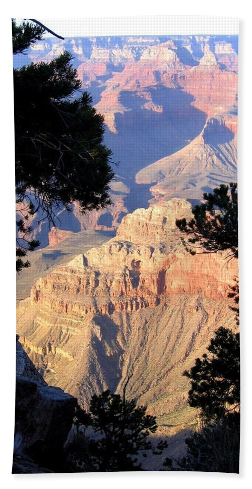 Grand Canyon Beach Towel featuring the photograph Grand Canyon 60 by Will Borden