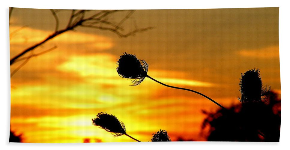 Landscape Photograph Beach Towel featuring the photograph Grasping The Sunset by Ms Judi