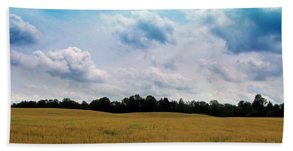 Grassy Field Photographs Beach Towel featuring the photograph Grassy Country Fields by Ms Judi