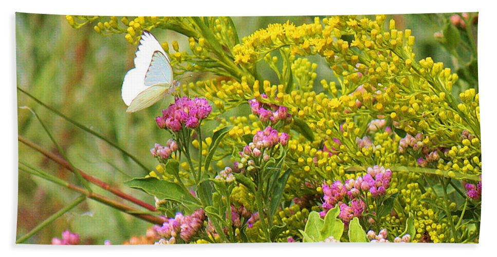 Roena King Beach Towel featuring the photograph Great Southern White Butterfly Likes The Pink Flowers by Roena King