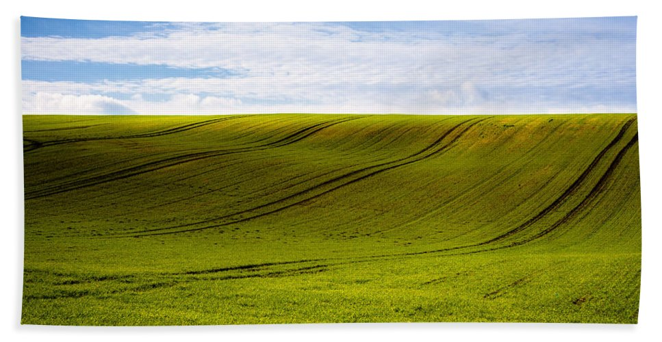Bushes Beach Towel featuring the photograph Green Hill by Svetlana Sewell
