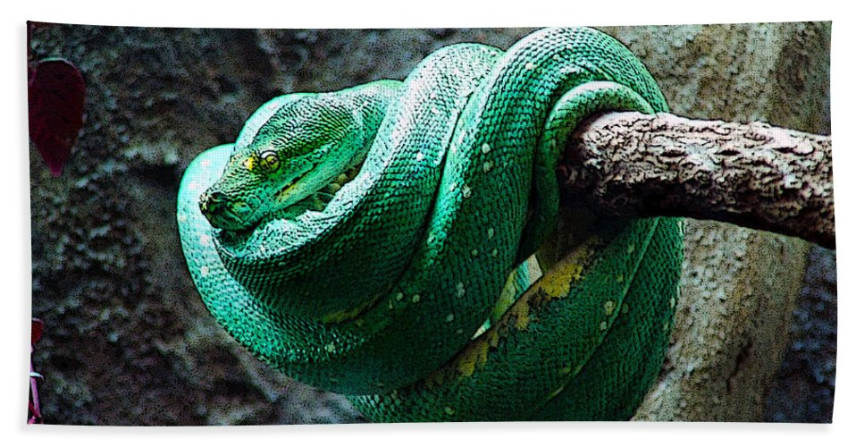 Reptile Beach Towel featuring the digital art Green Snake by CJ Clark