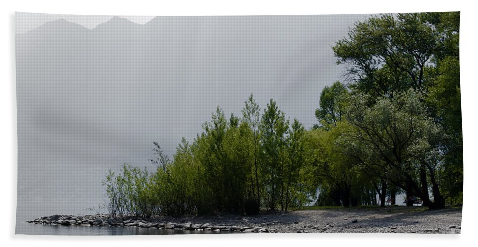 Trees Beach Towel featuring the photograph Green Trees by Mats Silvan