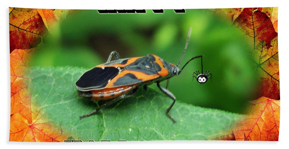 Halloween Beach Towel featuring the photograph Halloween Greeting Card - Box Elder Bug by Mother Nature