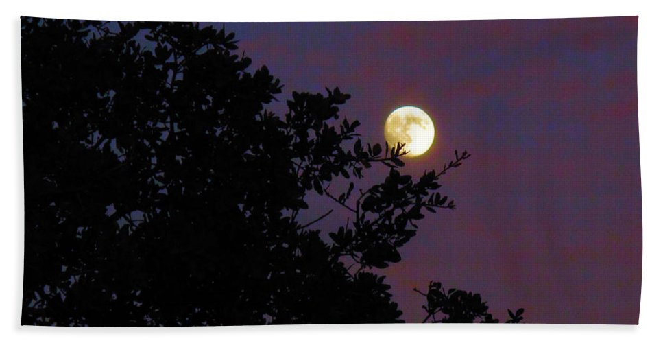 Moon Beach Towel featuring the photograph Halloween Moon 2009 by Joyce Dickens