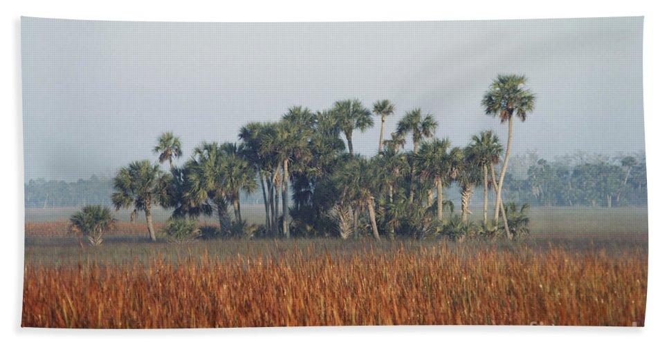 Nature Beach Towel featuring the photograph Hammock, Everglades National Park by Robert Ashworth