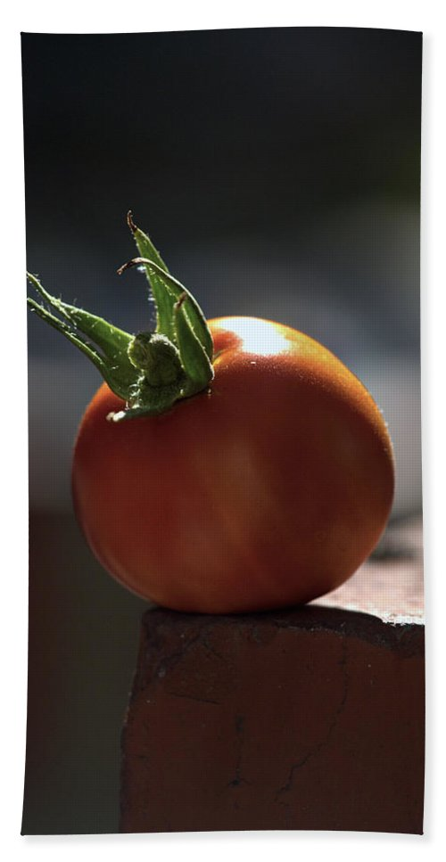 Tomato Beach Towel featuring the photograph Hang On by Joe Schofield
