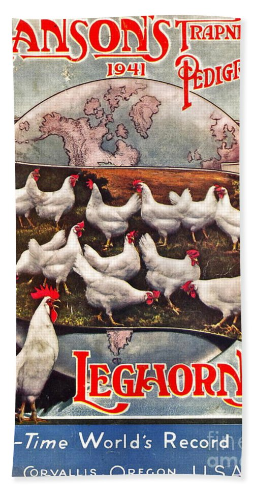 Chicken Beach Towel featuring the photograph Hansons Leghorns by Gwyn Newcombe