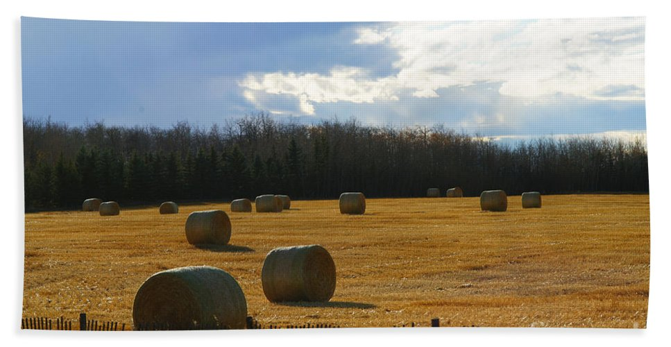 Hay Bails Beach Towel featuring the photograph Hay Bails by Randy Harris