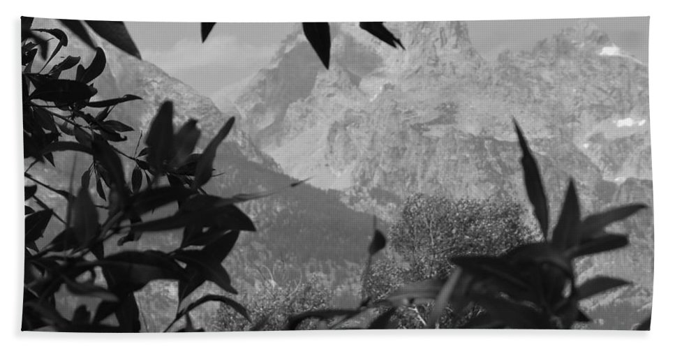 Nature Beach Towel featuring the photograph Hidden View Bw by Michael MacGregor