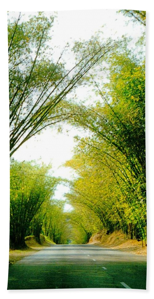 Holland Bamboo Beach Towel featuring the photograph Holland Bamboo Jamaica by Debbie Levene