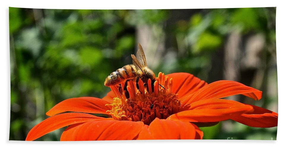 Outdoors Beach Towel featuring the photograph Honey Bee by Susan Herber