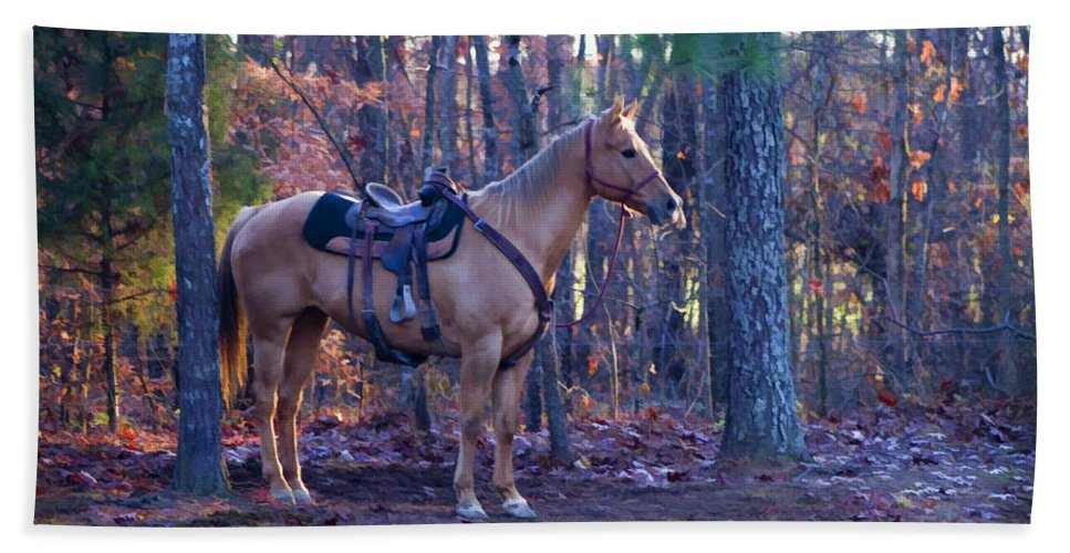 Horse Beach Towel featuring the photograph Horse Waiting For Rider by Kathy Clark