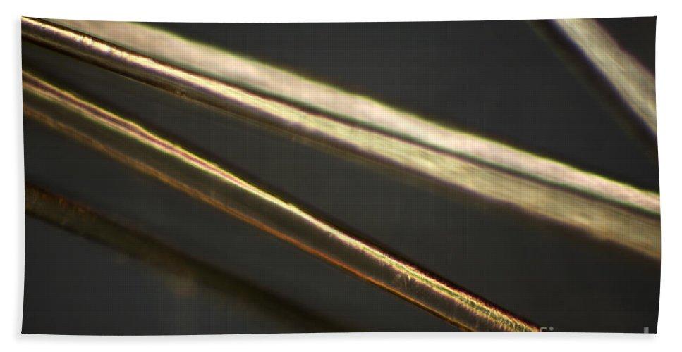 Light Microscopy Beach Towel featuring the photograph Human Hair by Ted Kinsman