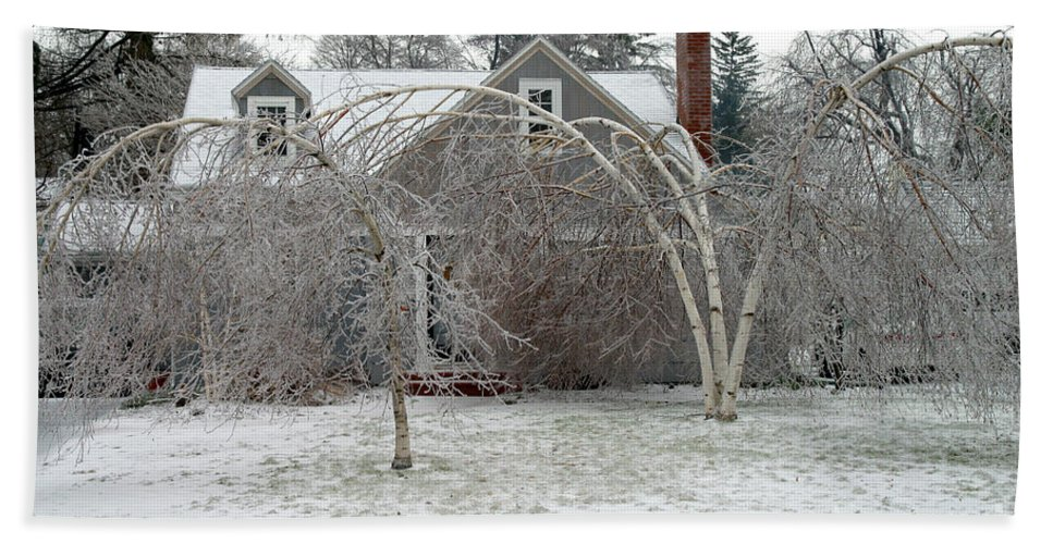 Ice Storm Beach Towel featuring the photograph Ice Storm by Ted Kinsman