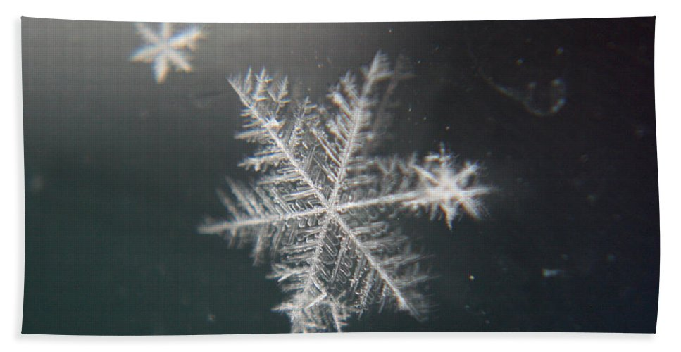 Snowflakes Beach Towel featuring the photograph Icy by Heather Applegate