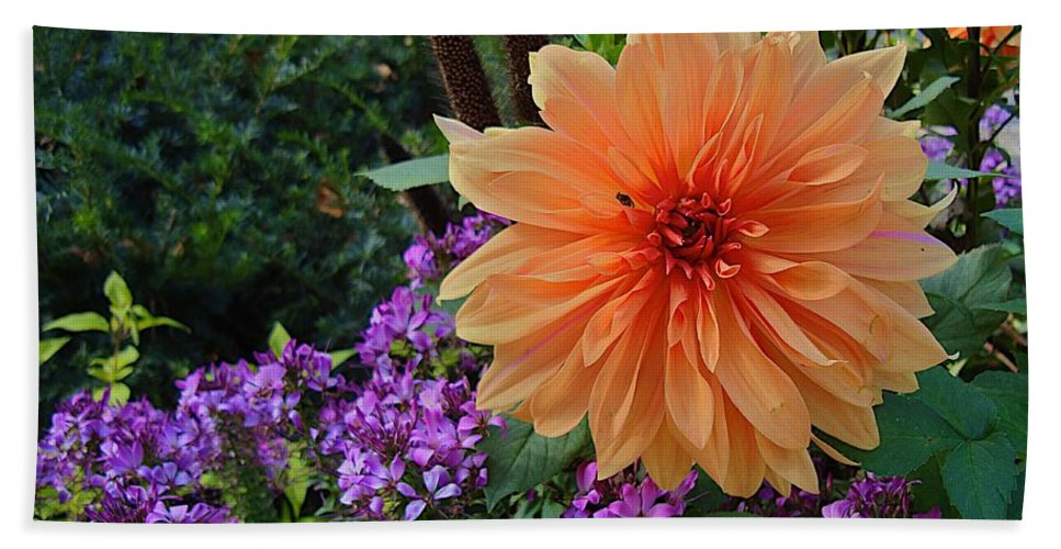 Flower Beach Towel featuring the photograph Im Sports Circle by Joseph Yarbrough