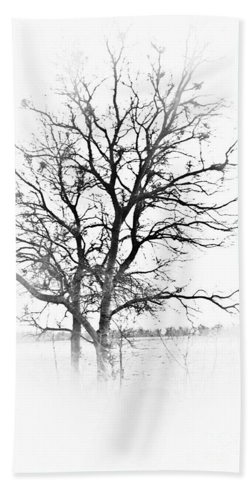 Tree Beach Towel featuring the photograph In Black And White by Kim Henderson
