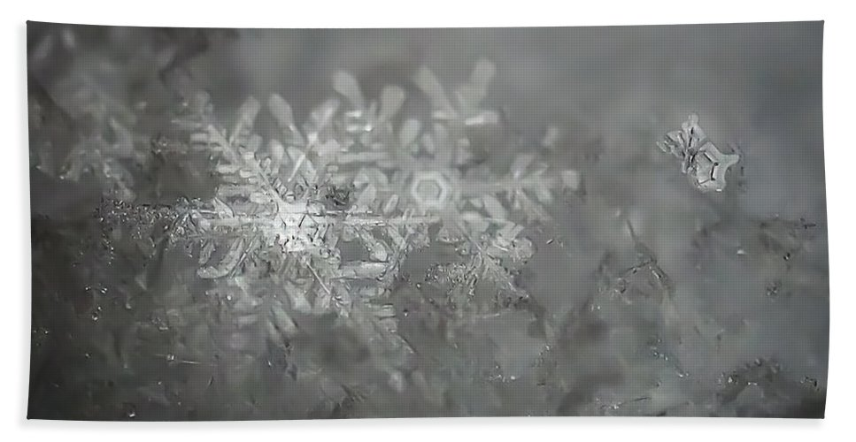 Snowflake Beach Towel featuring the photograph In The Garden Of The Snowflakes by Beth Riser