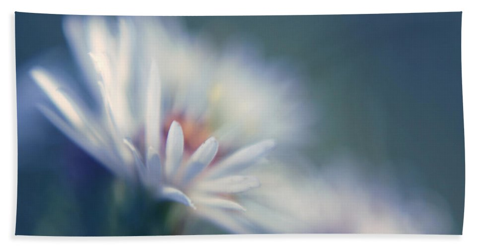 Daisy Beach Towel featuring the photograph Innocence - 03 by Variance Collections